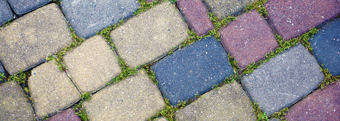 Remove Green Growth On Your Path Patio Driveway And Roof