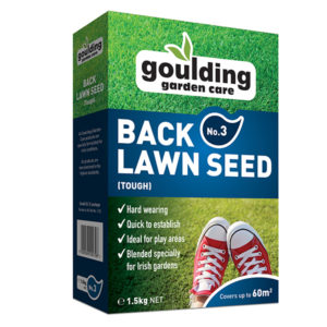 back lawn seed